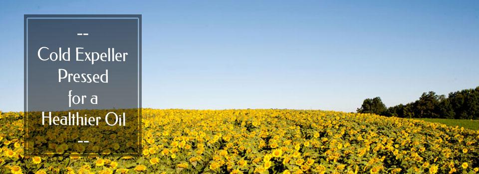 sunflowerslider4